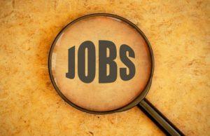 job after web design course hindi
