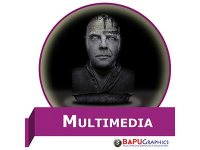 multimedia course in hindi